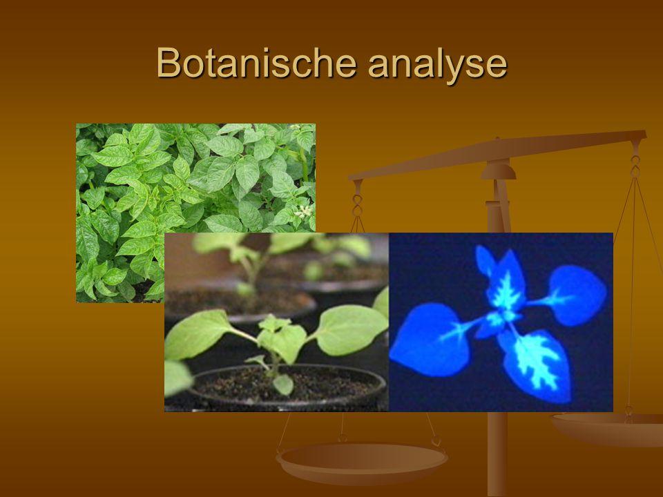 Botanische analyse