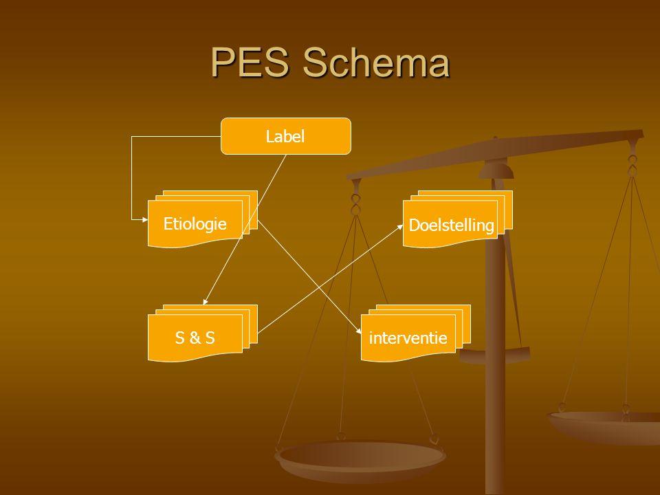 PES Schema Label Etiologie Doelstelling S & S interventie