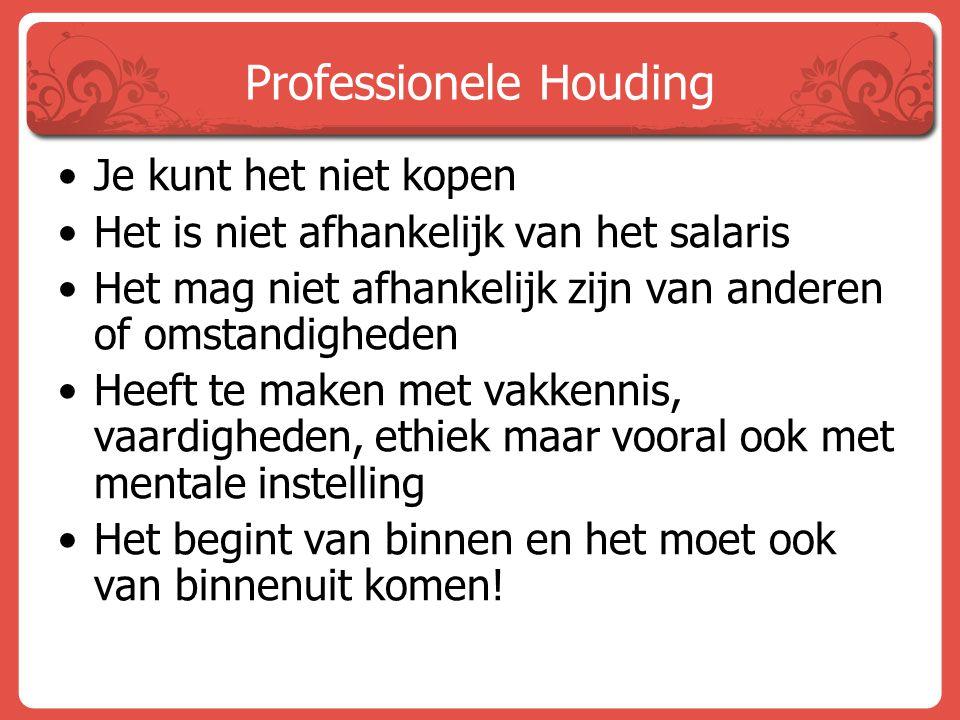 Professionele Houding