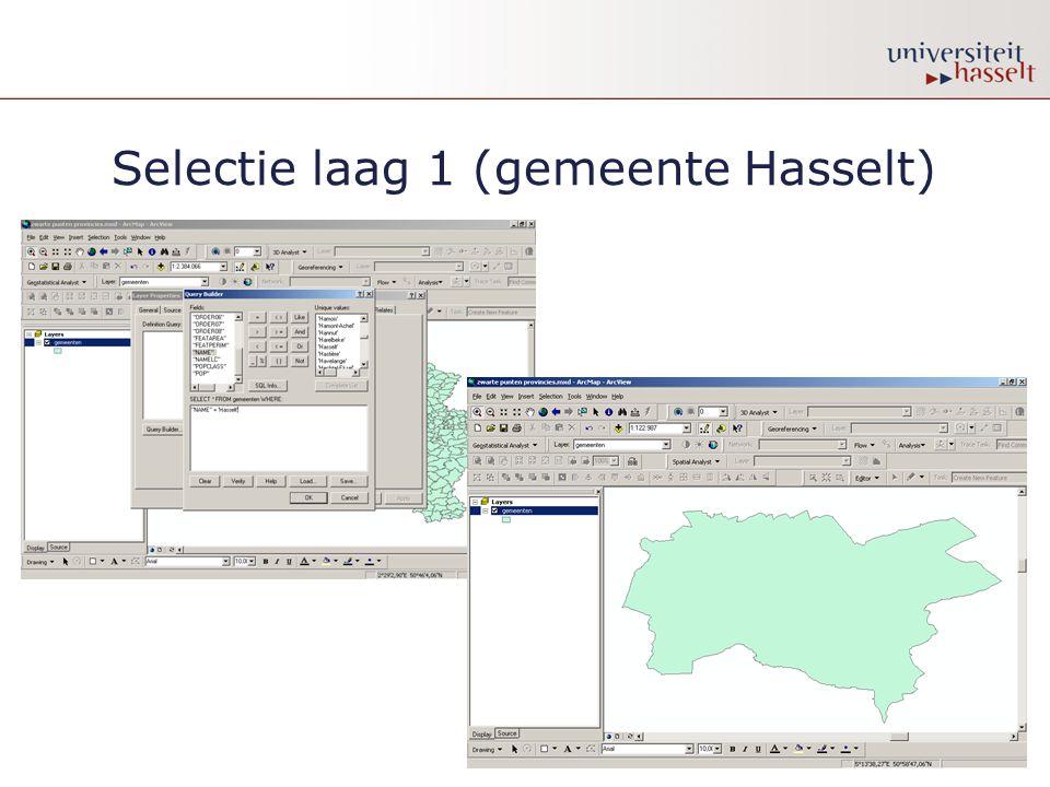 Selectie laag 1 (gemeente Hasselt)