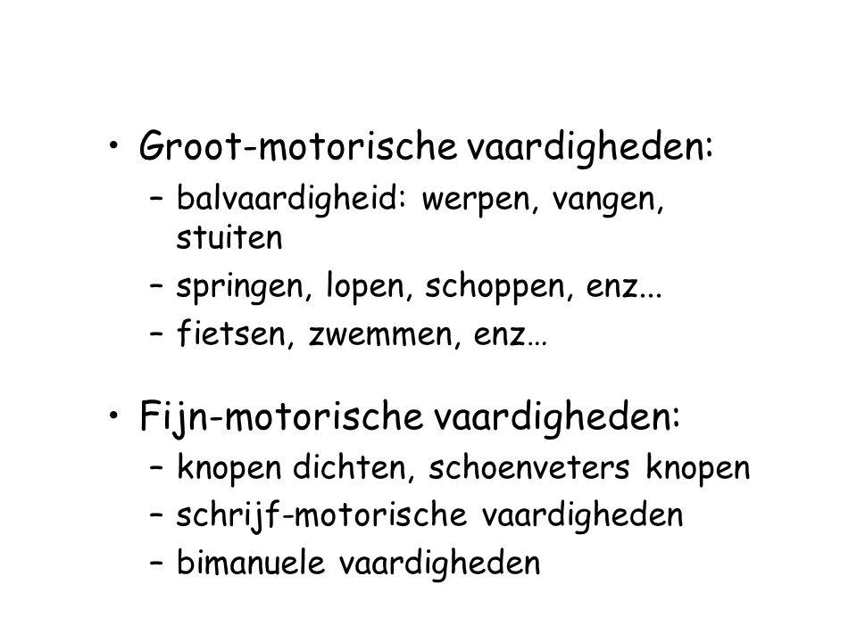 Groot-motorische vaardigheden: