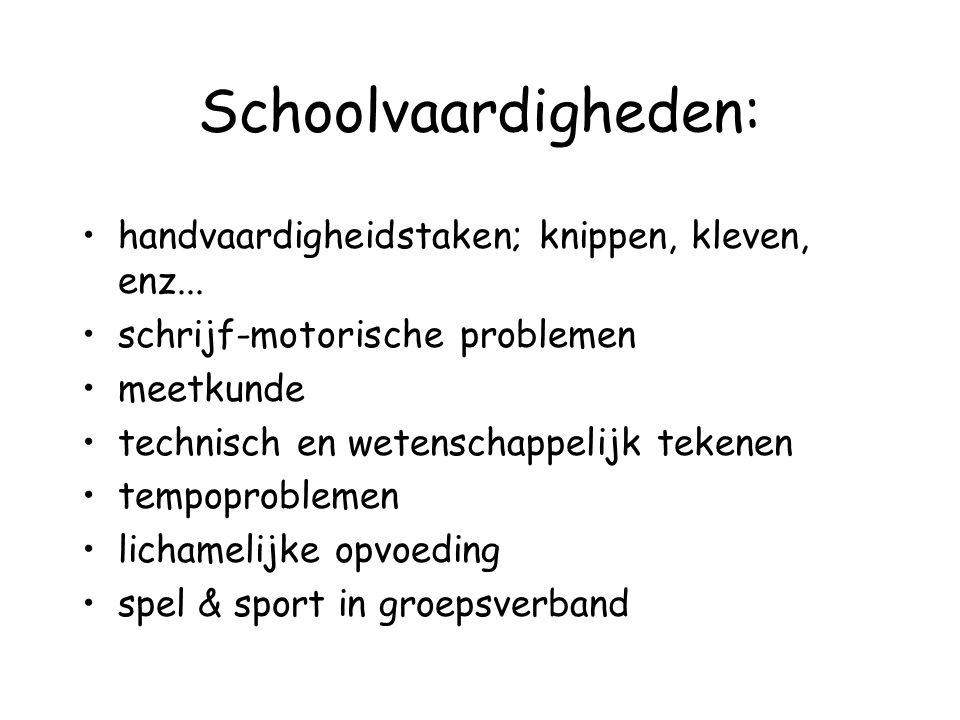 Schoolvaardigheden: handvaardigheidstaken; knippen, kleven, enz...