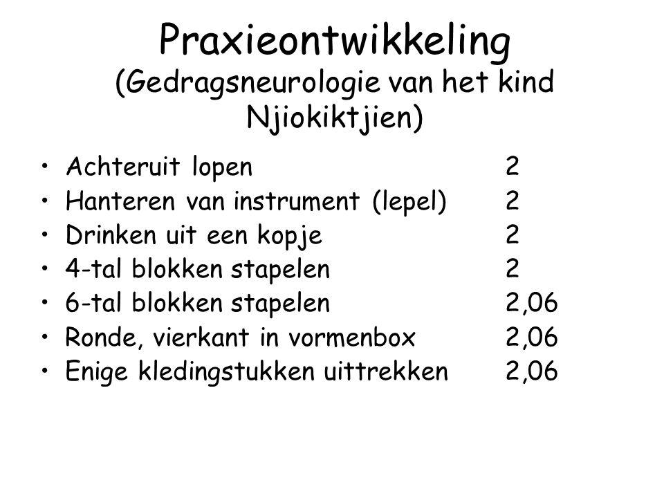 Praxieontwikkeling (Gedragsneurologie van het kind Njiokiktjien)