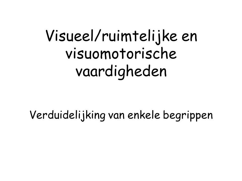 Visueel/ruimtelijke en visuomotorische vaardigheden