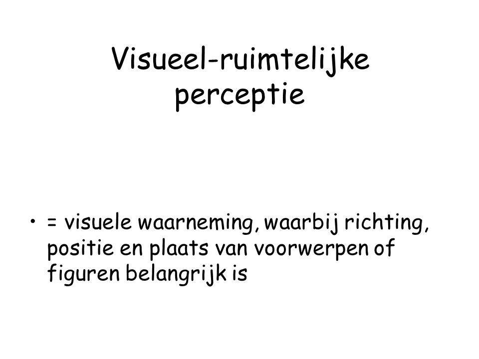 Visueel-ruimtelijke perceptie