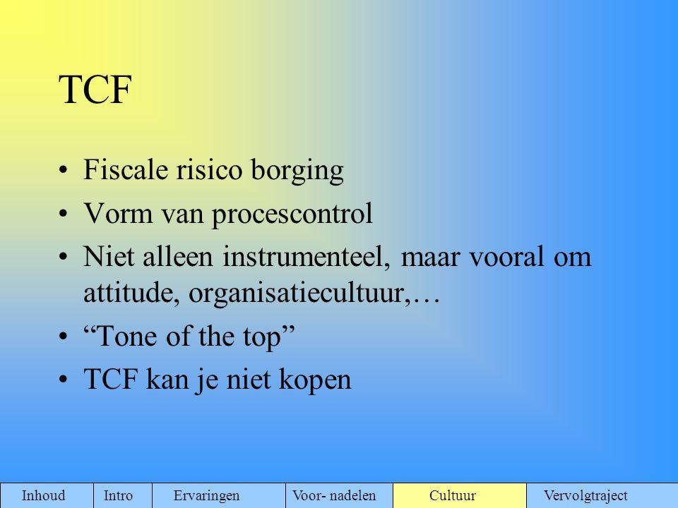 TCF Fiscale risico borging Vorm van procescontrol