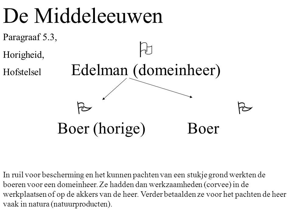 De Middeleeuwen  Edelman (domeinheer)   Boer (horige) Boer