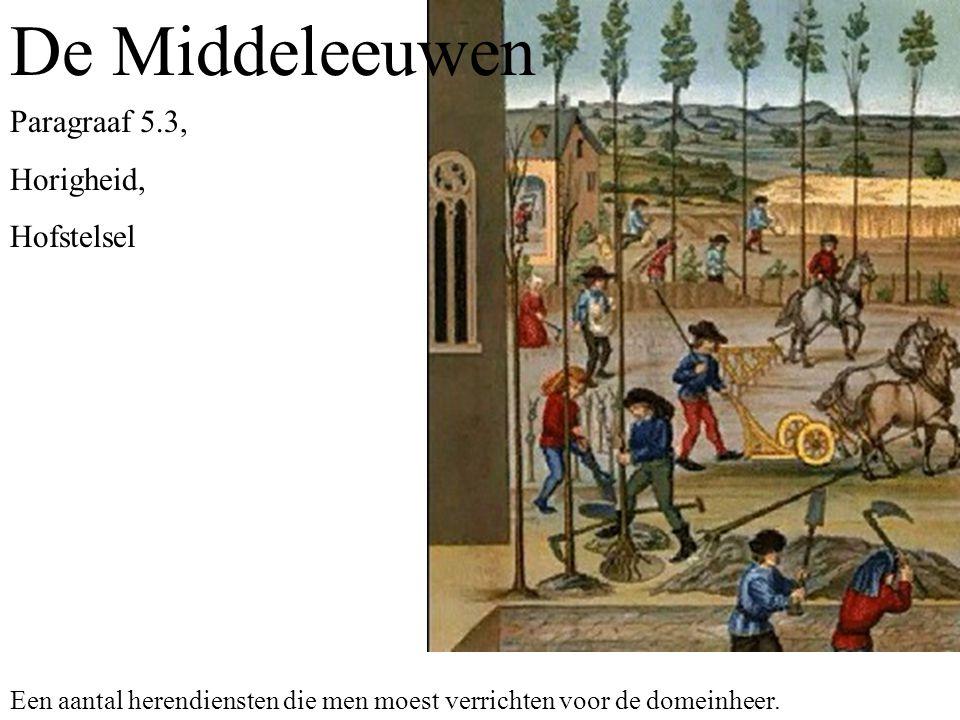 De Middeleeuwen Paragraaf 5.3, Horigheid, Hofstelsel