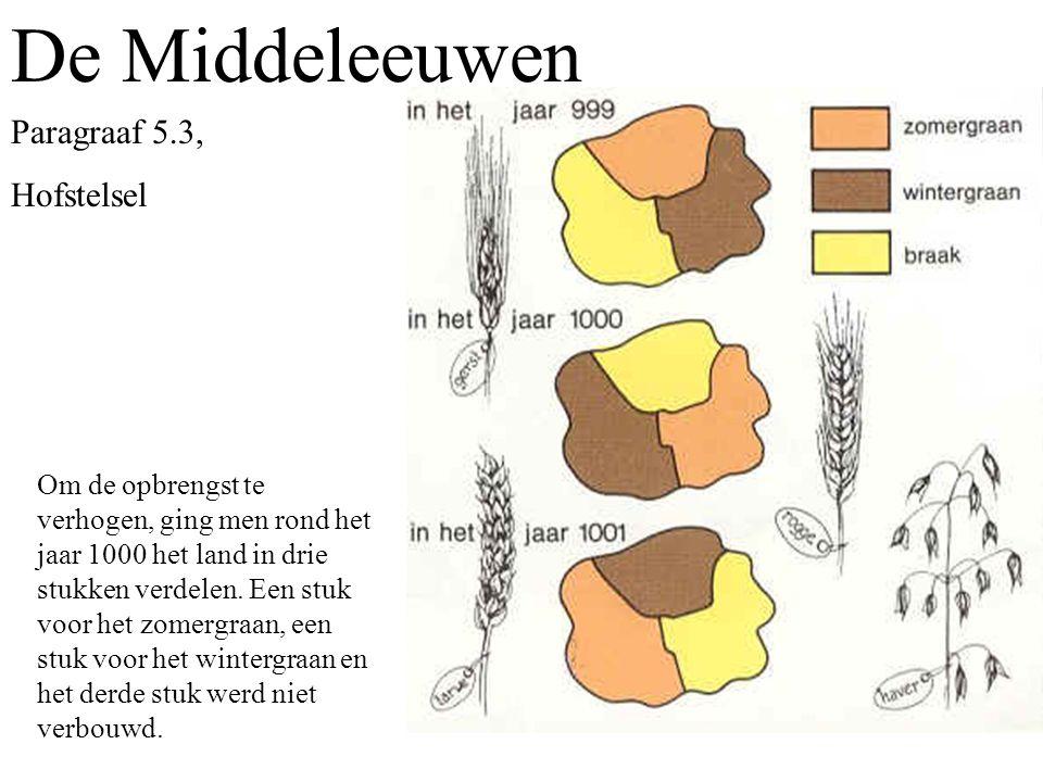 De Middeleeuwen Paragraaf 5.3, Hofstelsel