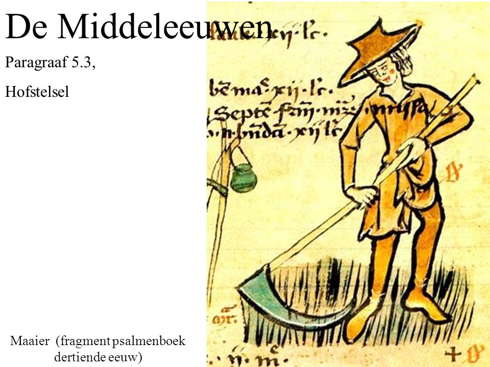 Maaier (fragment psalmenboek dertiende eeuw)