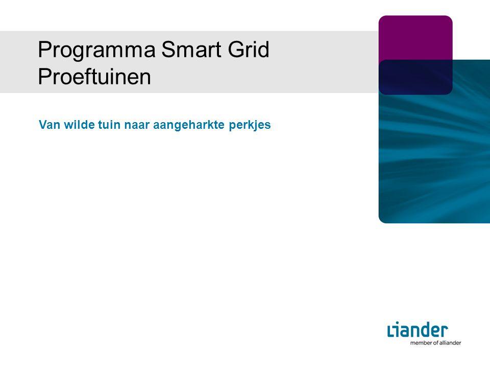 Programma Smart Grid Proeftuinen