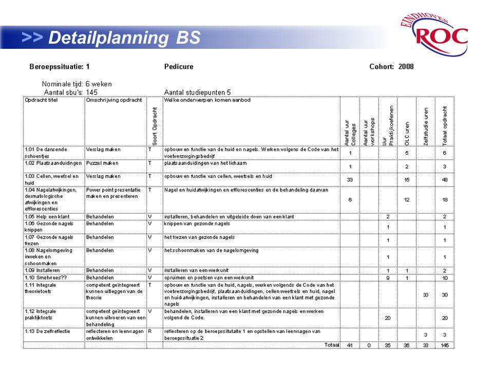 >> Detailplanning BS