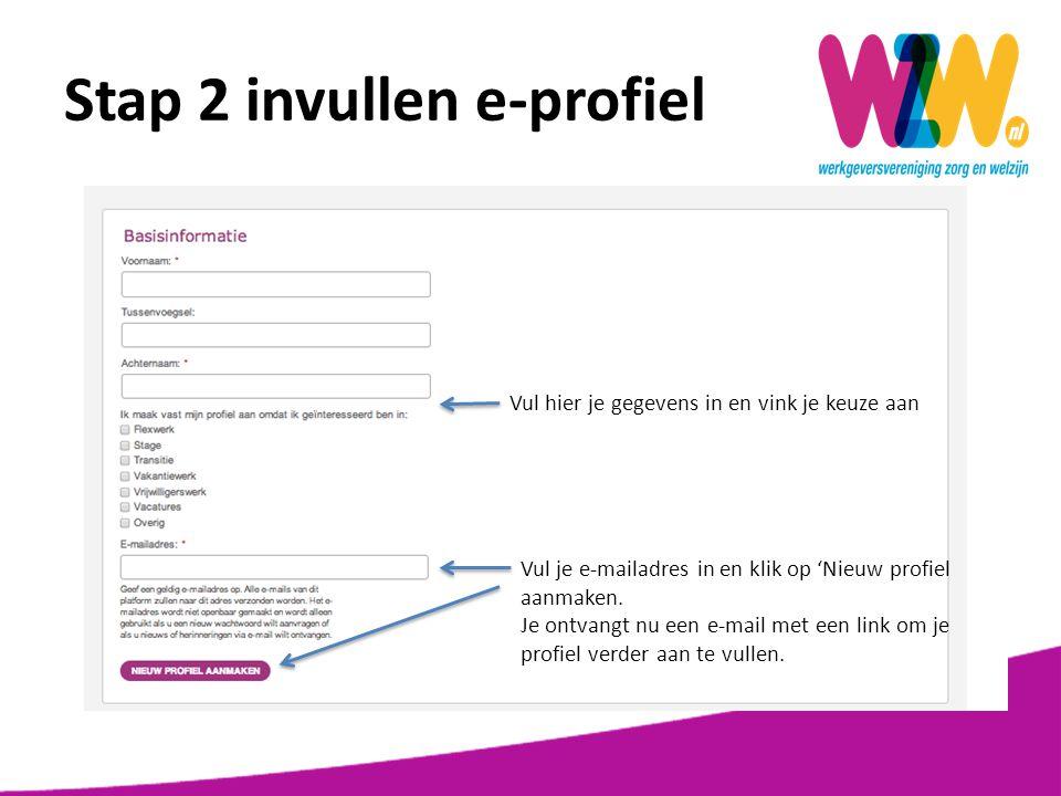 Stap 2 invullen e-profiel