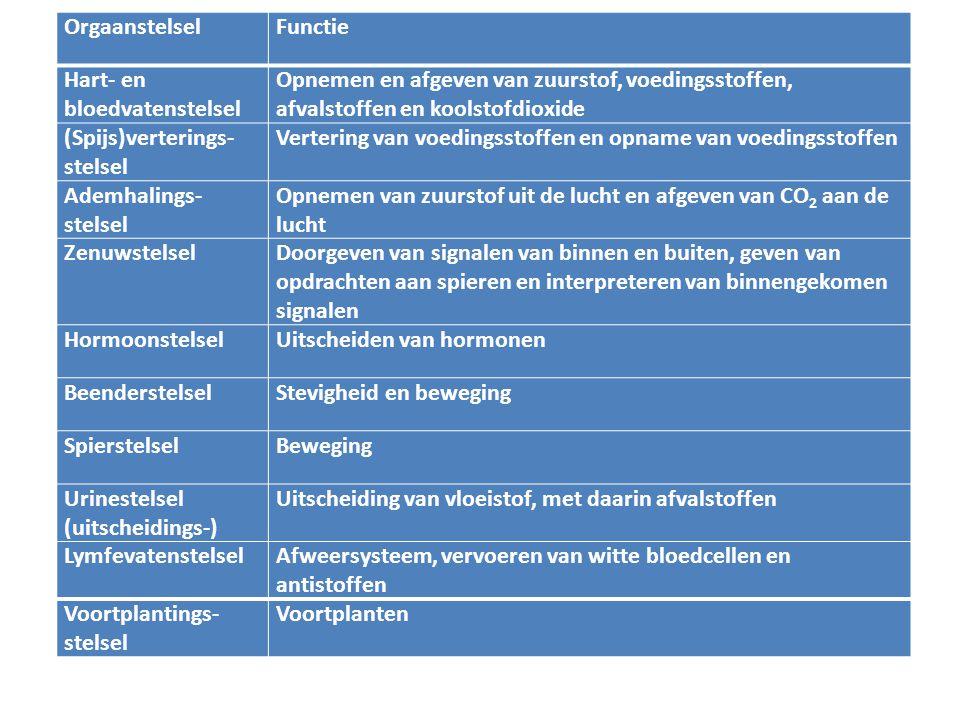Orgaanstelsel Functie. Hart- en bloedvatenstelsel. Opnemen en afgeven van zuurstof, voedingsstoffen, afvalstoffen en koolstofdioxide.