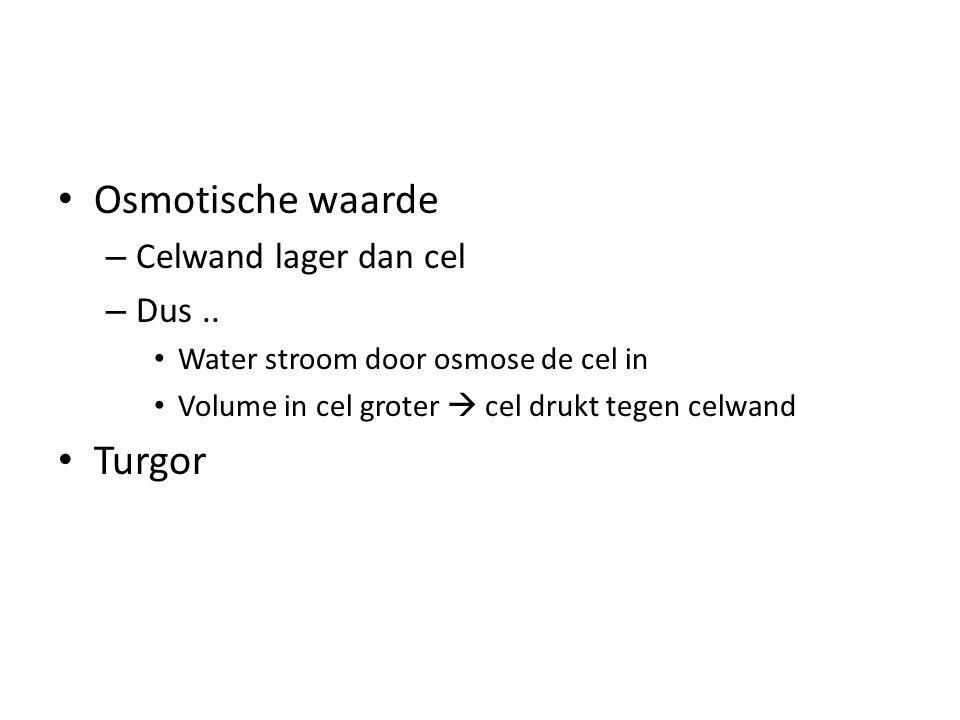 Osmotische waarde Turgor Celwand lager dan cel Dus ..