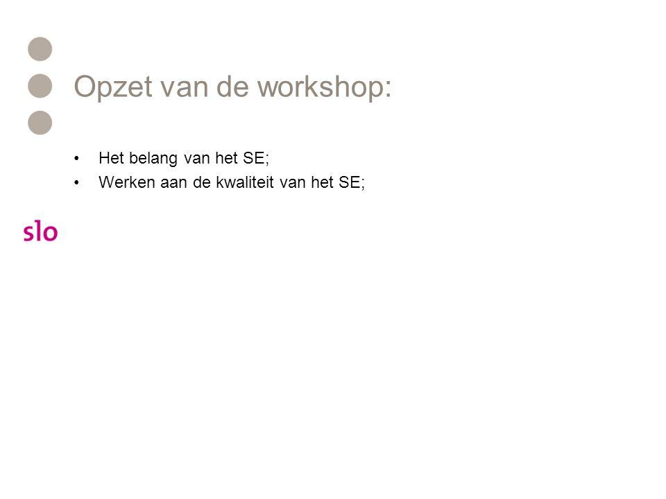 Opzet van de workshop: Het belang van het SE;
