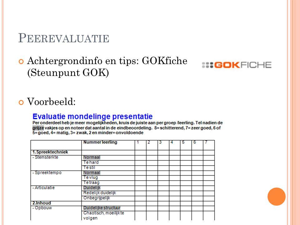 Peerevaluatie Achtergrondinfo en tips: GOKfiche (Steunpunt GOK)