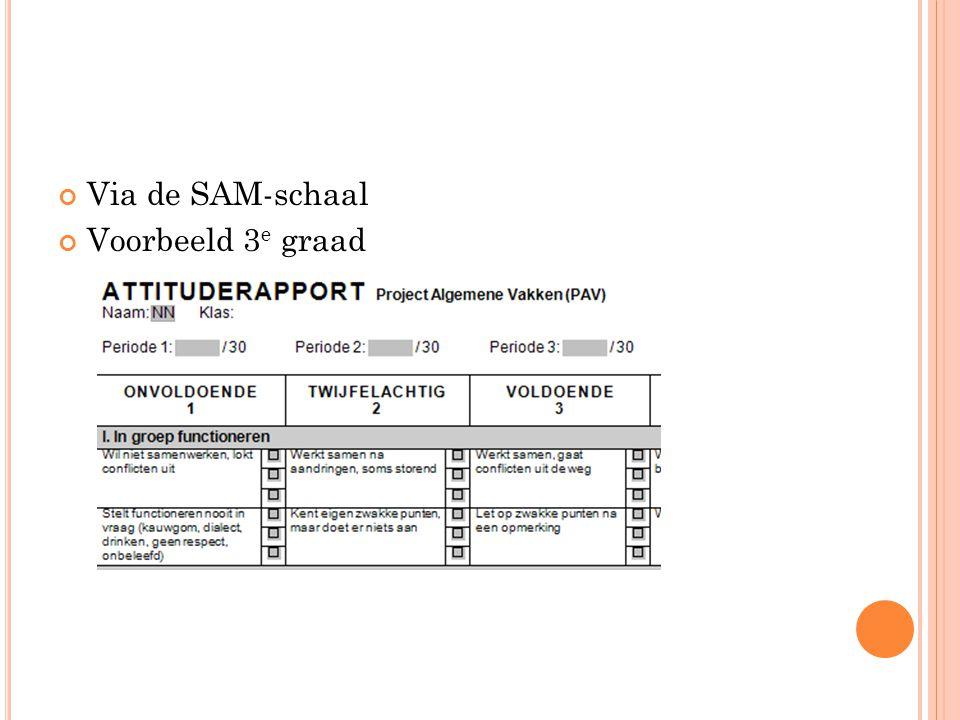 Via de SAM-schaal Voorbeeld 3e graad
