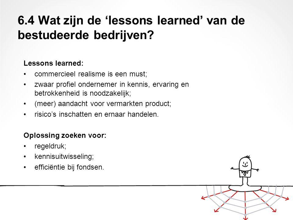 6.4 Wat zijn de 'lessons learned' van de bestudeerde bedrijven