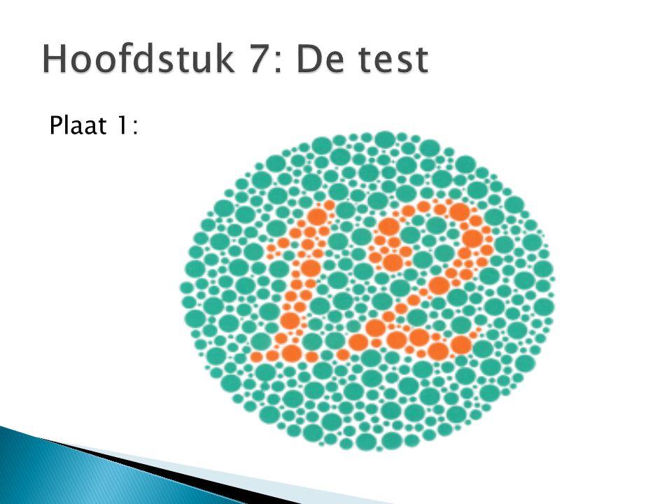 Hoofdstuk 7: De test Plaat 1: