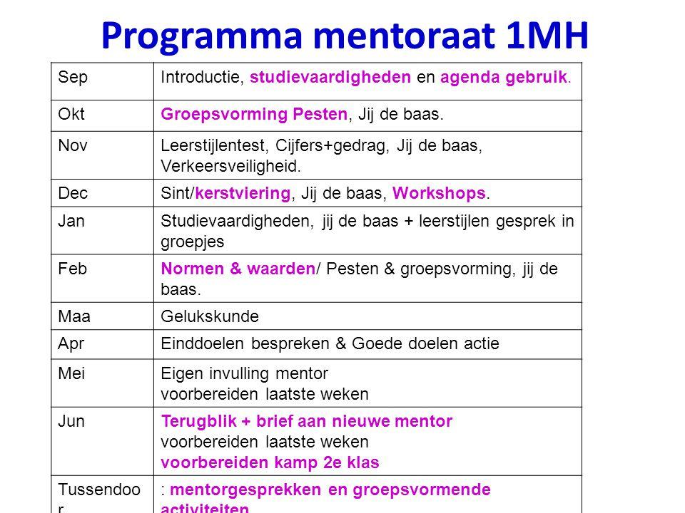 Programma mentoraat 1MH
