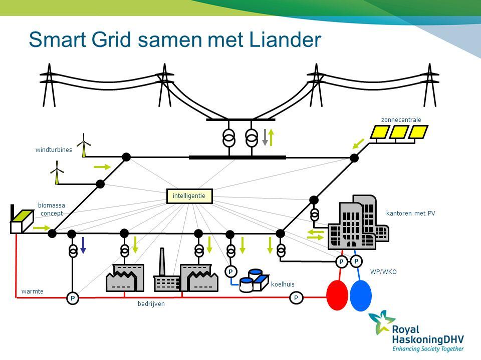 Smart Grid samen met Liander