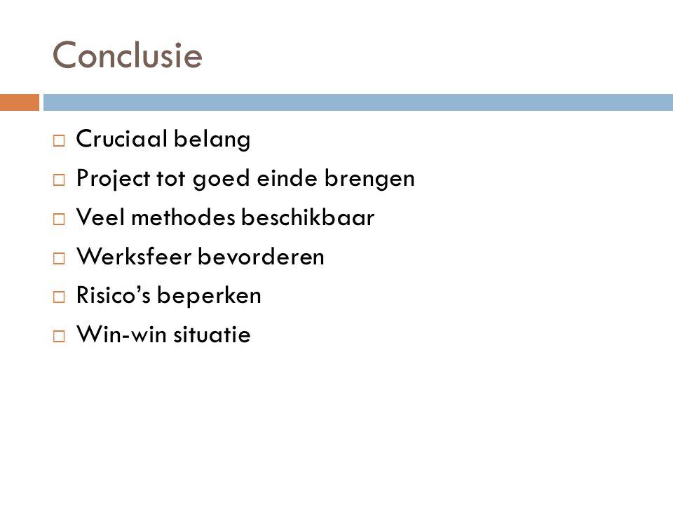 Conclusie Cruciaal belang Project tot goed einde brengen