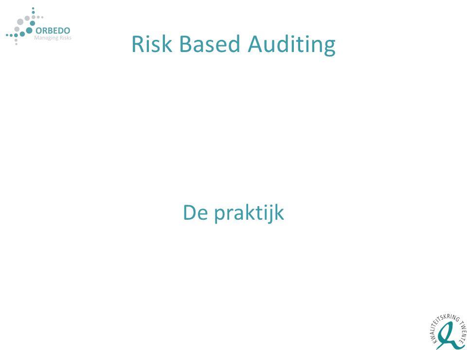 Risk Based Auditing De praktijk