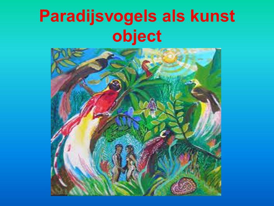 Paradijsvogels als kunst object