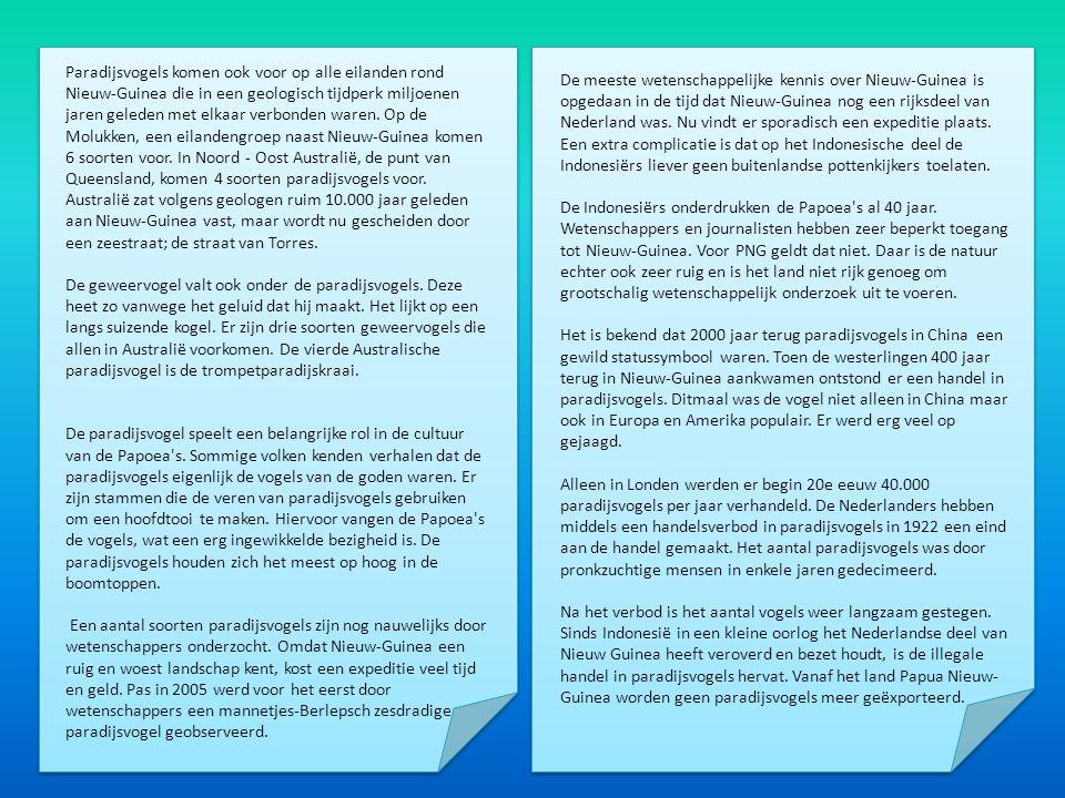 Paradijsvogels komen ook voor op alle eilanden rond Nieuw-Guinea die in een geologisch tijdperk miljoenen jaren geleden met elkaar verbonden waren. Op de Molukken, een eilandengroep naast Nieuw-Guinea komen 6 soorten voor. In Noord - Oost Australië, de punt van Queensland, komen 4 soorten paradijsvogels voor. Australië zat volgens geologen ruim 10.000 jaar geleden aan Nieuw-Guinea vast, maar wordt nu gescheiden door een zeestraat; de straat van Torres.