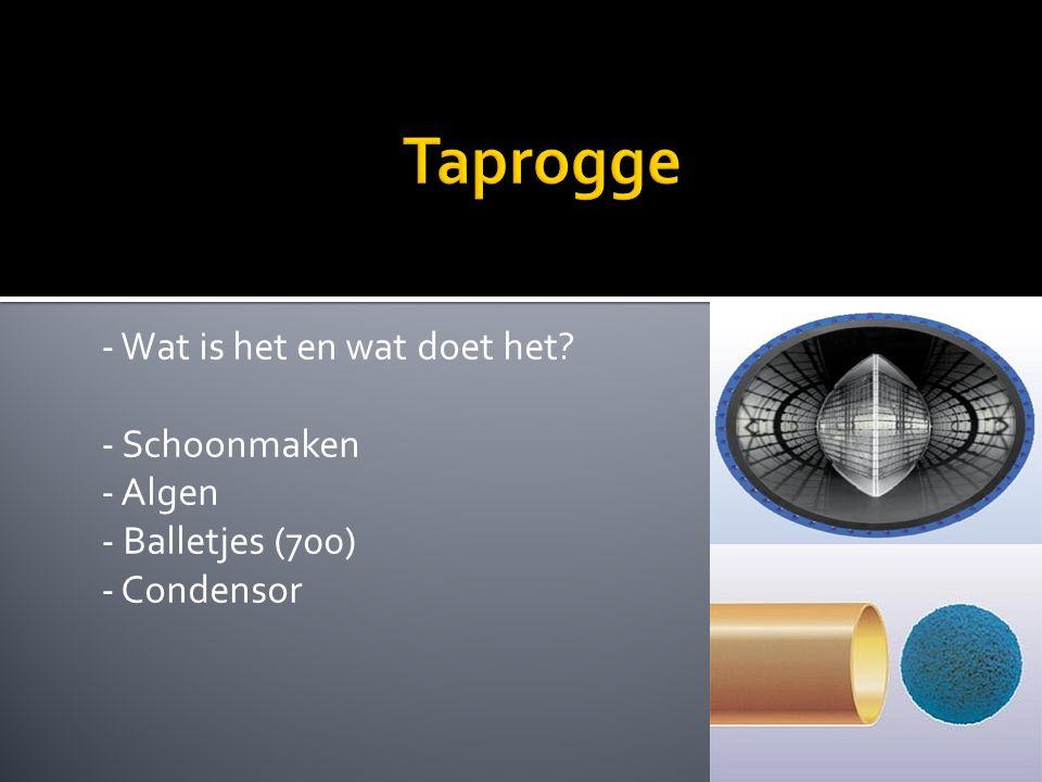 Taprogge - Wat is het en wat doet het - Schoonmaken - Algen - Balletjes (700) - Condensor