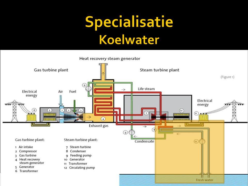 Specialisatie Koelwater