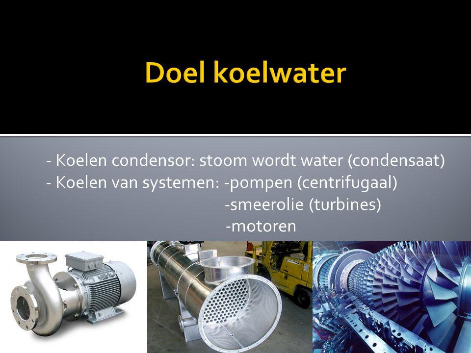 Doel koelwater