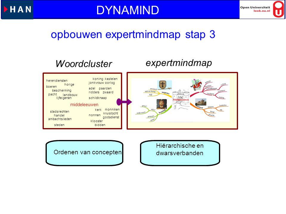 DYNAMIND opbouwen expertmindmap stap 3 expertmindmap Woordcluster