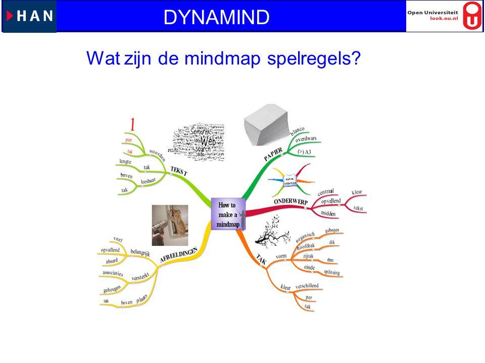 DYNAMIND Wat zijn de mindmap spelregels met stiften uitproberen