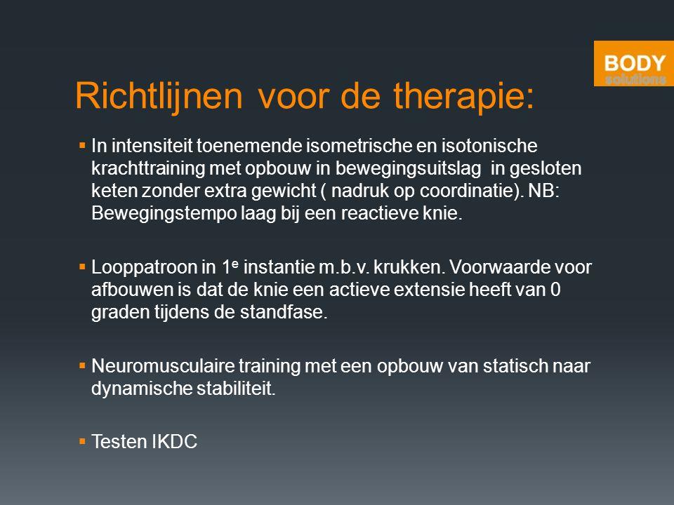 Richtlijnen voor de therapie: