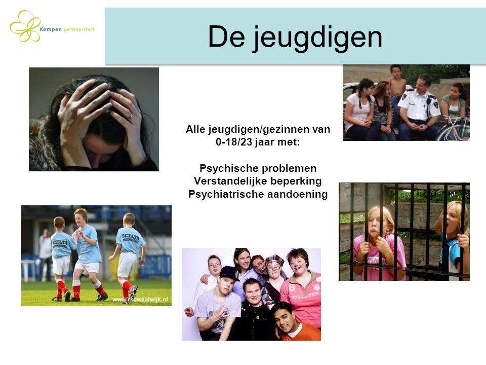 De jeugdigen Alle jeugdigen/gezinnen van 0-18/23 jaar met: Psychische problemen Verstandelijke beperking Psychiatrische aandoening.
