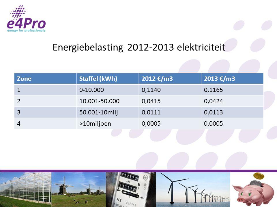 Energiebelasting 2012-2013 elektriciteit