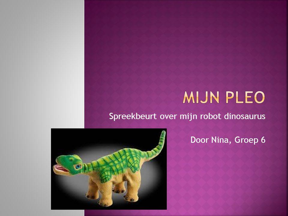 Spreekbeurt over mijn robot dinosaurus Door Nina, Groep 6