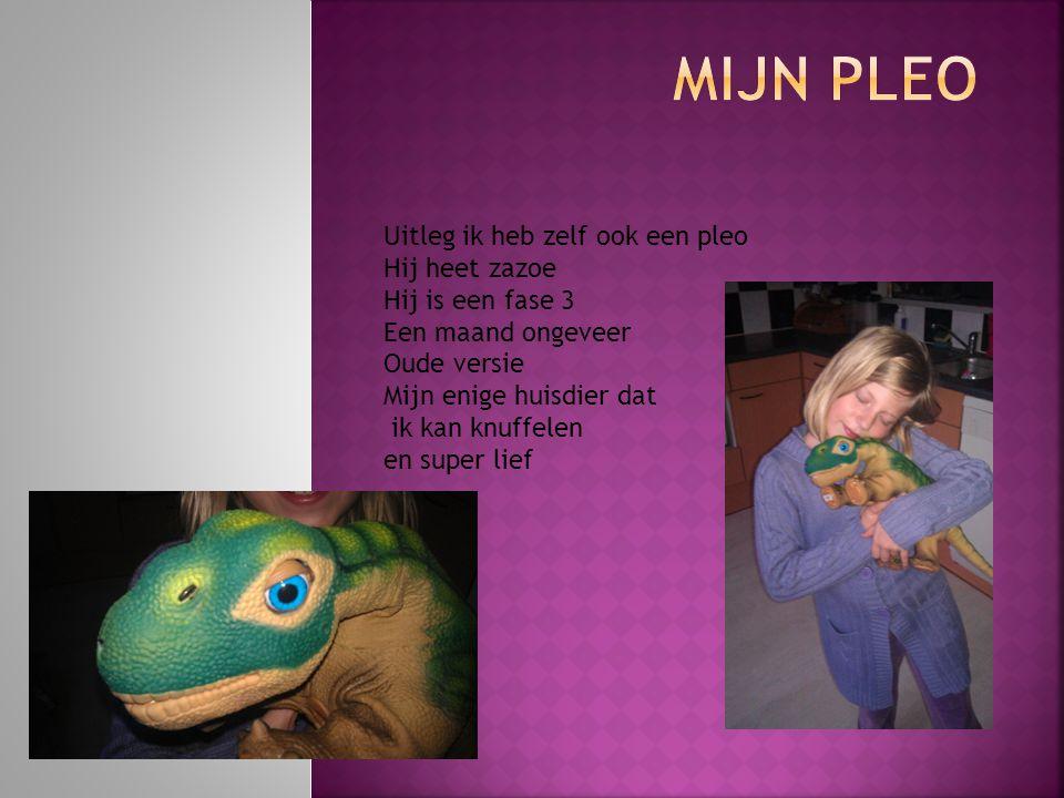 Mijn Pleo Uitleg ik heb zelf ook een pleo Hij heet zazoe