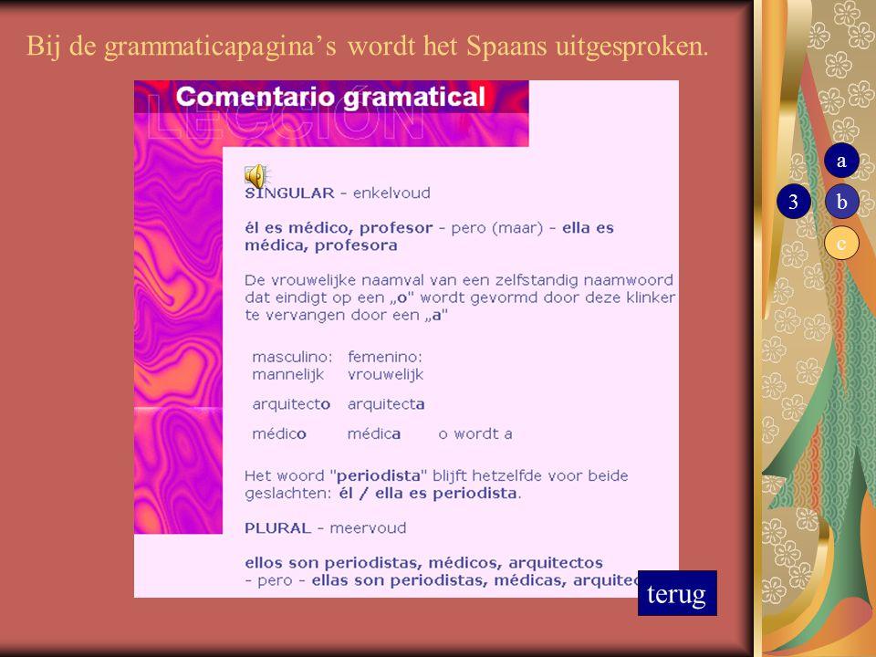 Bij de grammaticapagina's wordt het Spaans uitgesproken.