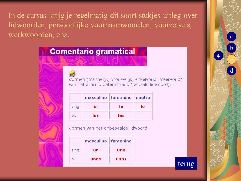 In de cursus krijg je regelmatig dit soort stukjes uitleg over lidwoorden, persoonlijke voornaamwoorden, voorzetsels, werkwoorden, enz.