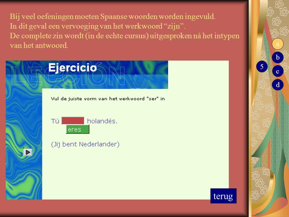 Bij veel oefeningen moeten Spaanse woorden worden ingevuld