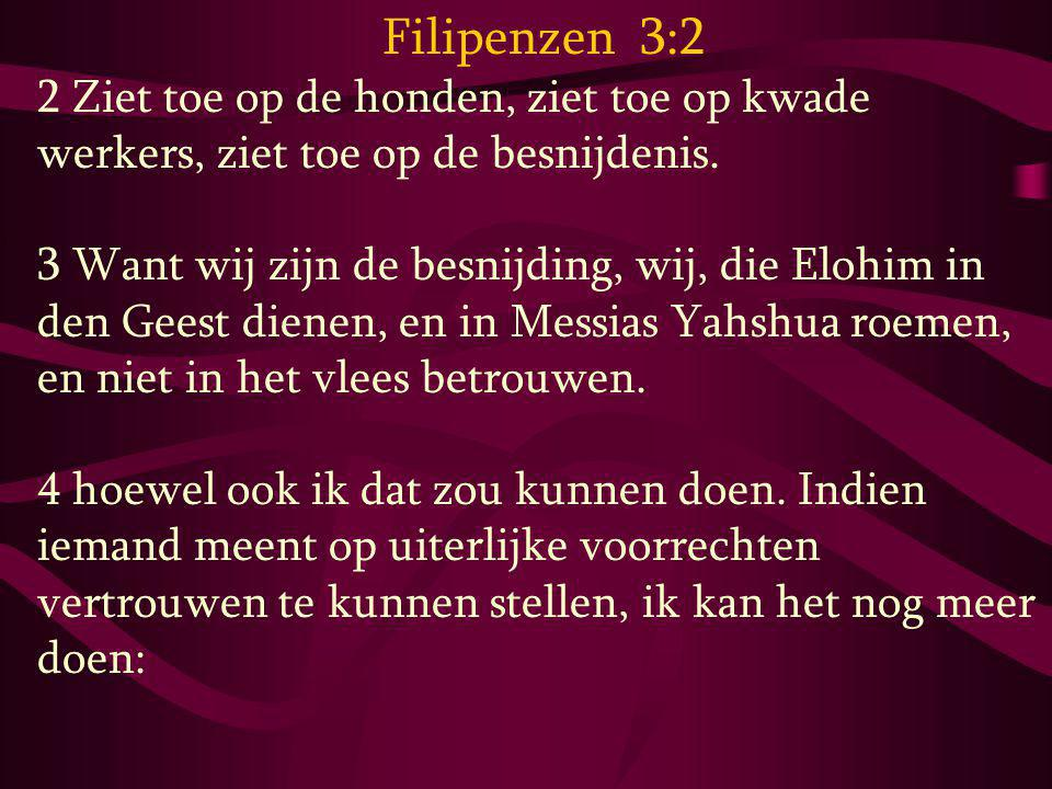 Filipenzen 3:2 2 Ziet toe op de honden, ziet toe op kwade werkers, ziet toe op de besnijdenis.