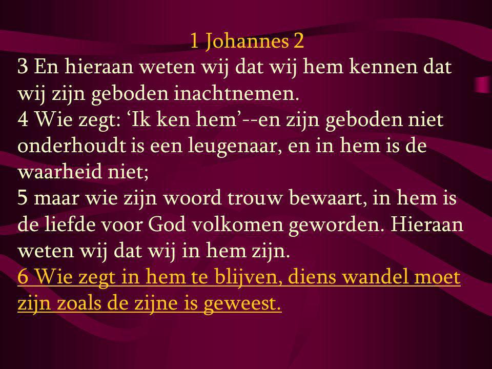 1 Johannes 2 3 En hieraan weten wij dat wij hem kennen dat wij zijn geboden inachtnemen.