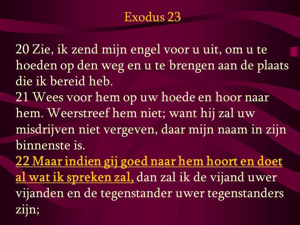 Exodus 23 20 Zie, ik zend mijn engel voor u uit, om u te hoeden op den weg en u te brengen aan de plaats die ik bereid heb.