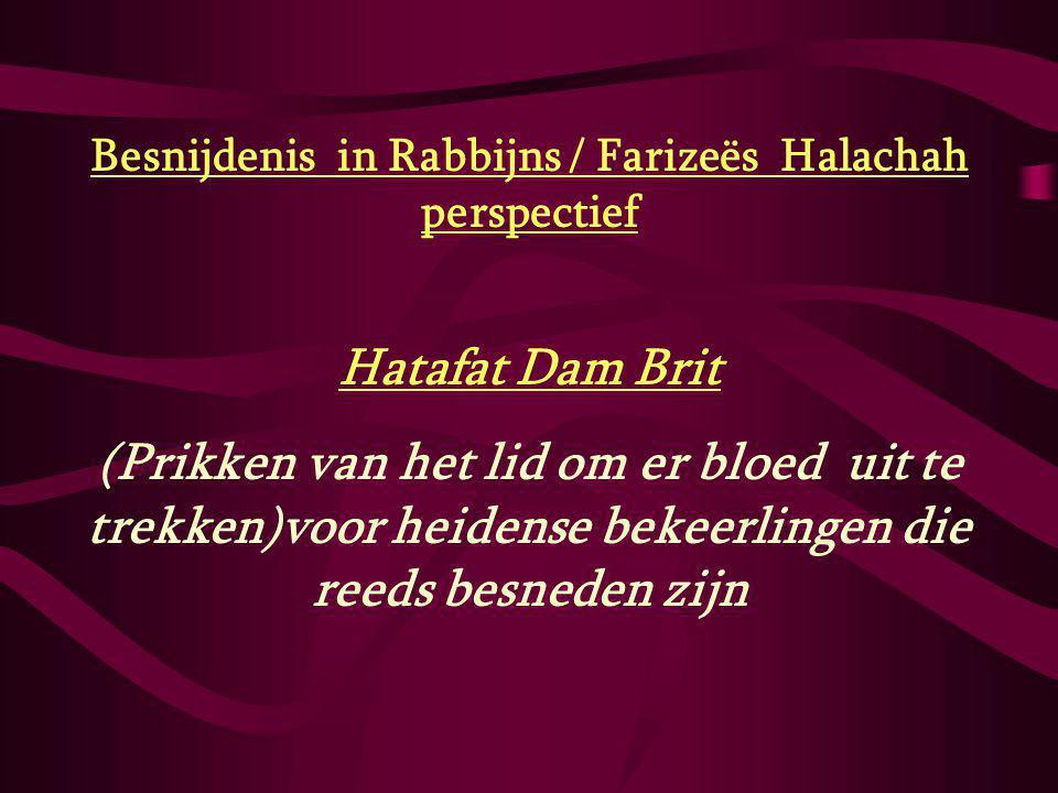 Besnijdenis in Rabbijns / Farizeës Halachah perspectief