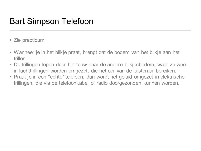 Bart Simpson Telefoon Zie practicum