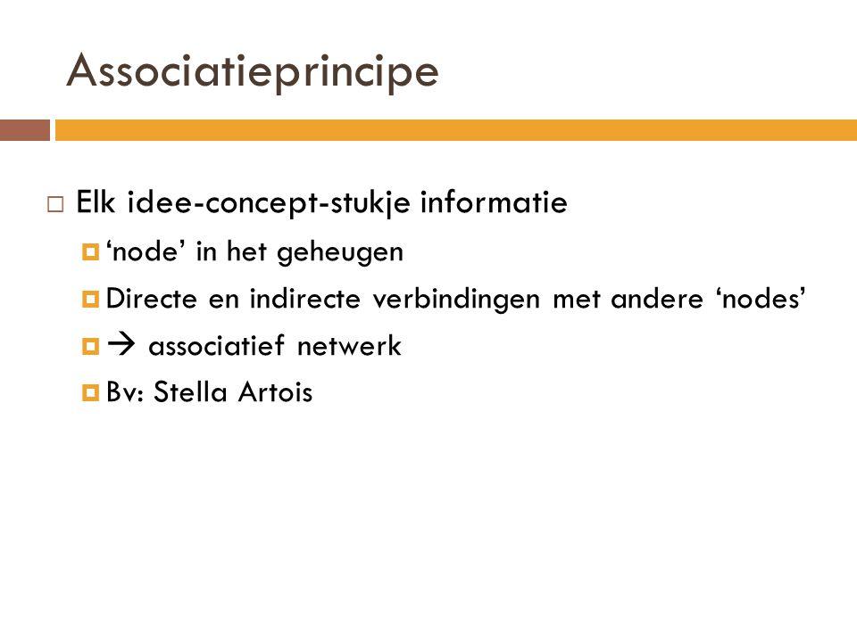 Associatieprincipe Elk idee-concept-stukje informatie