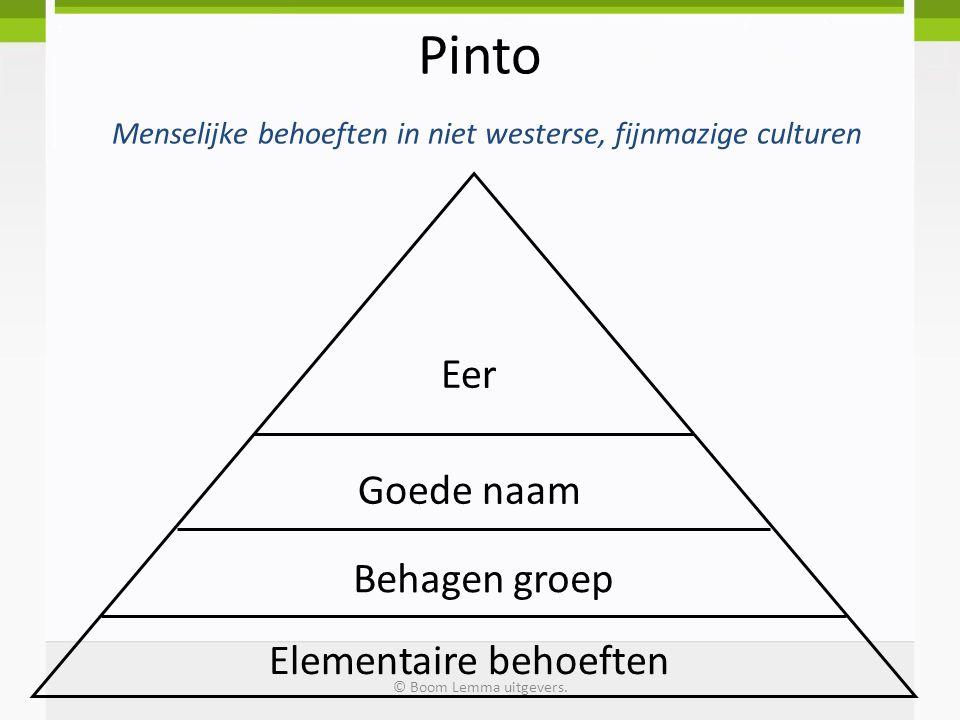 Pinto Menselijke behoeften in niet westerse, fijnmazige culturen